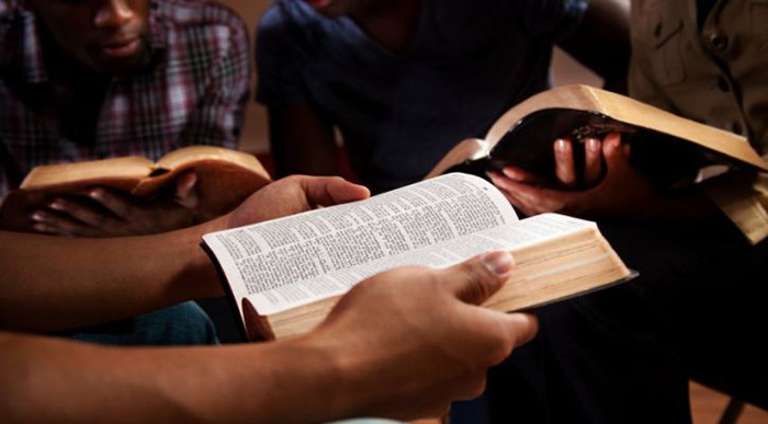 youth studying bible